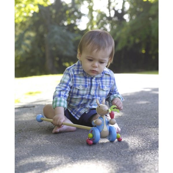 Peter Rabbit Wooden Push Along (Boxed) - Orange Tree Toys