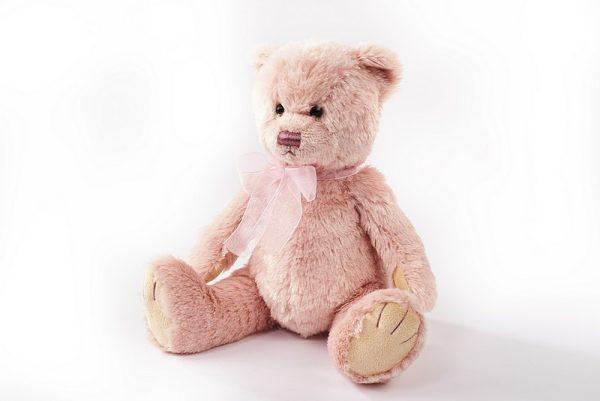 langs pink plush teddy bear