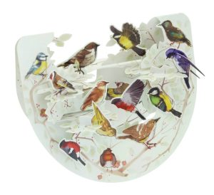Santoro Garden Birds Popnrock 3D Pop-Up Card - Greetings and Birthday Card